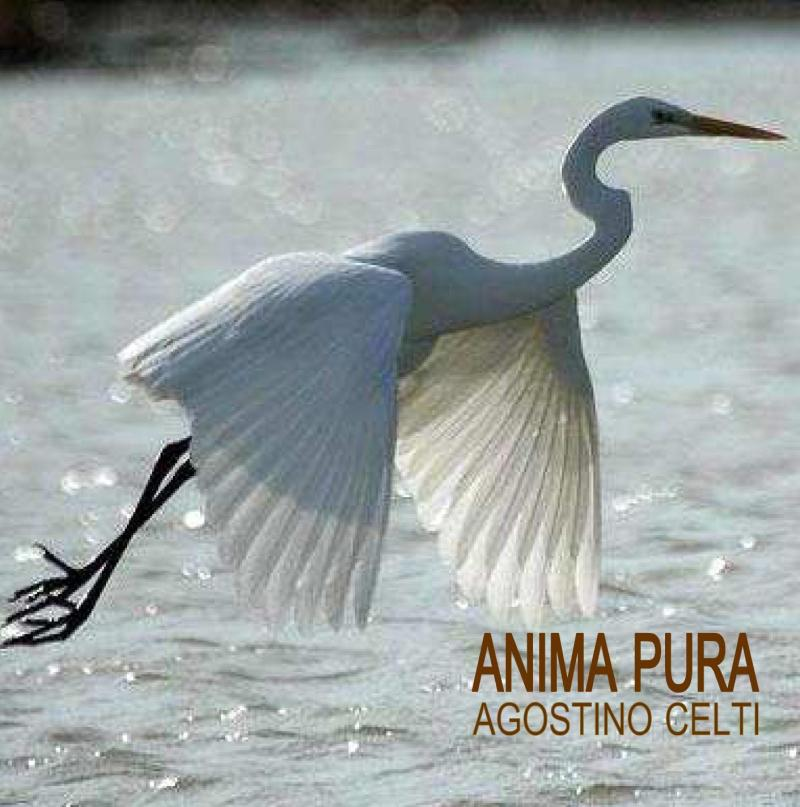 agostino celti-ANIMA PURA-2006-2011-cover