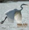Agostino Celti - ANIMA PURA (2011) cover CDm